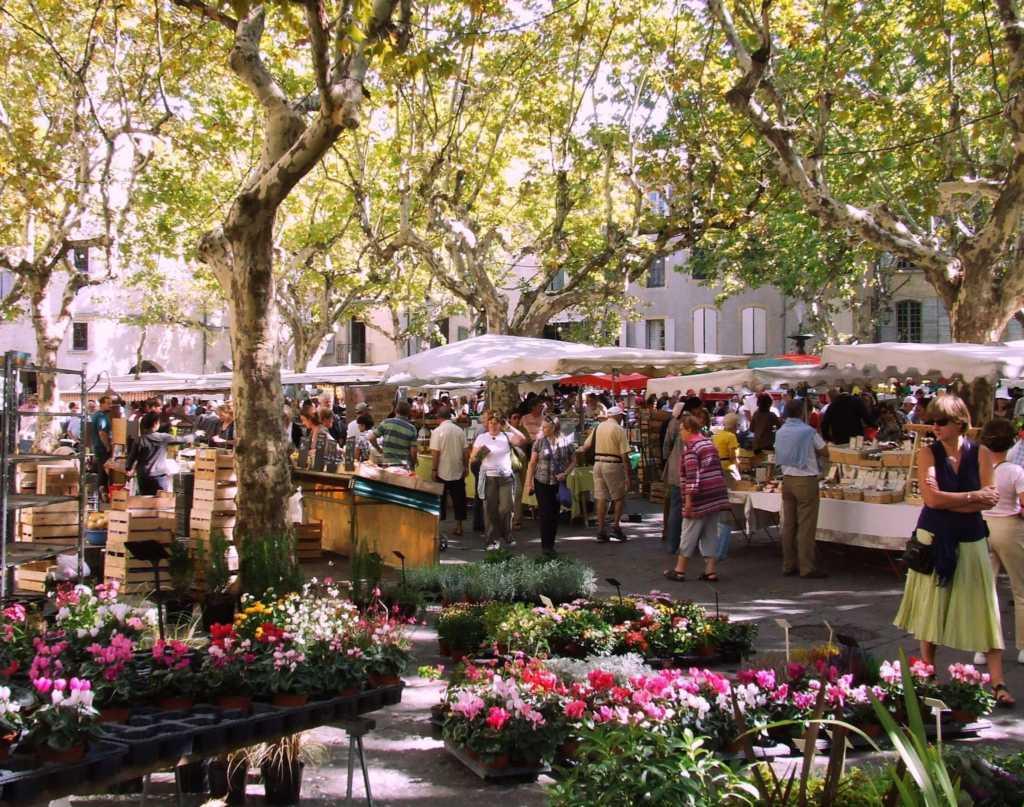 Fleurs_au_marché_dUzès